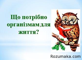 shho-potribno-organizmam-dlya-zhittya