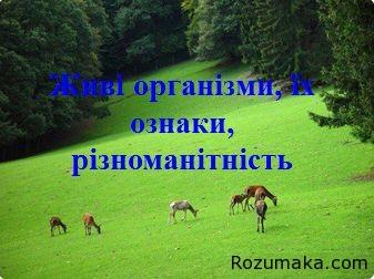 zhivi-organizmi-yih-riznomanitnist